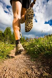 trail shoe 2